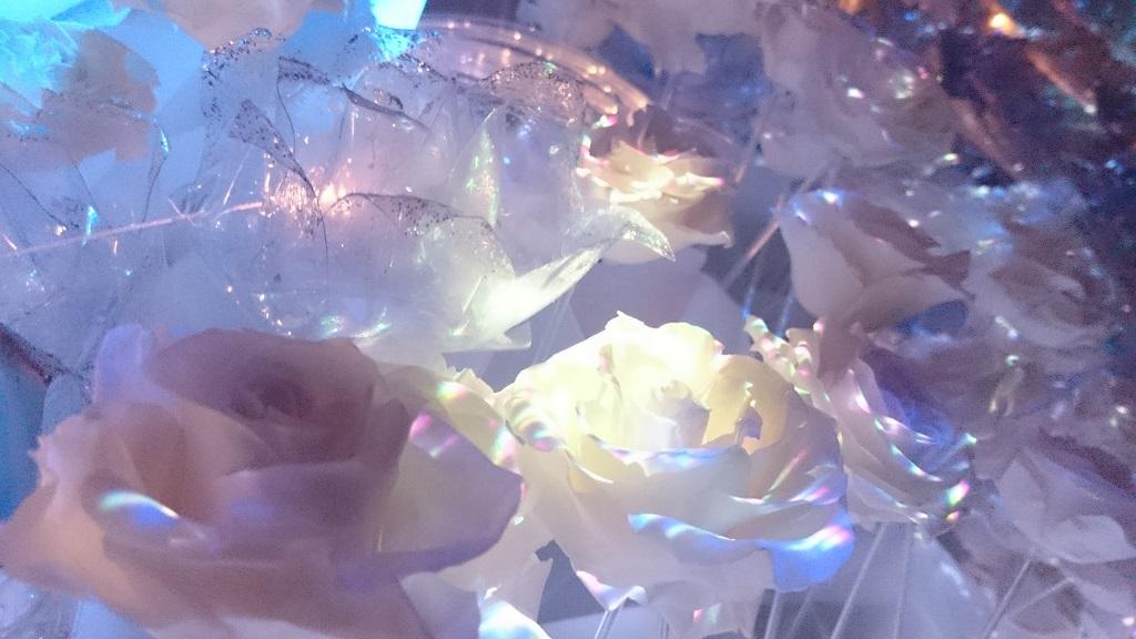 flowersbynaked_氷のバラ2