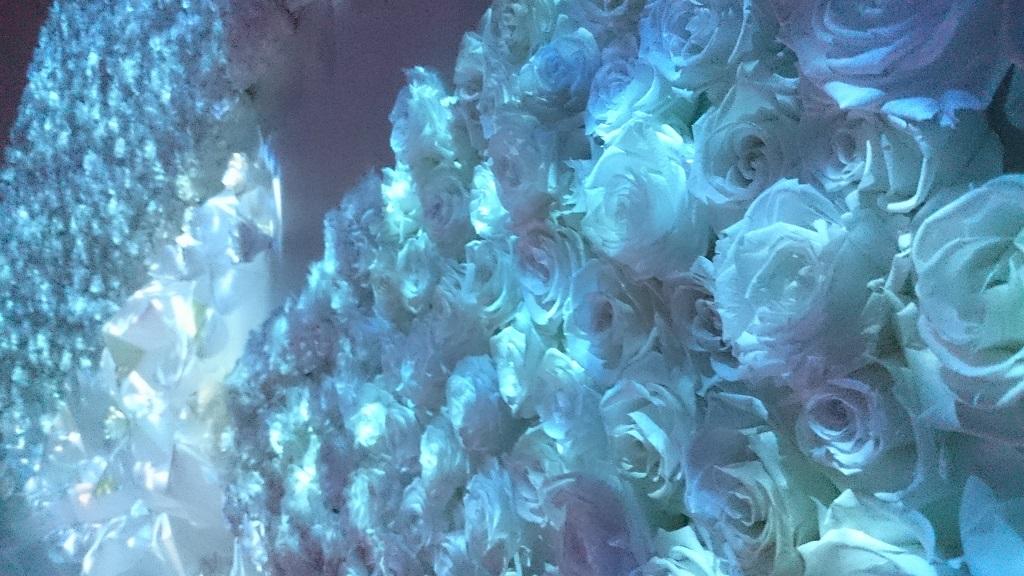 flowersbynaked_氷のバラ3