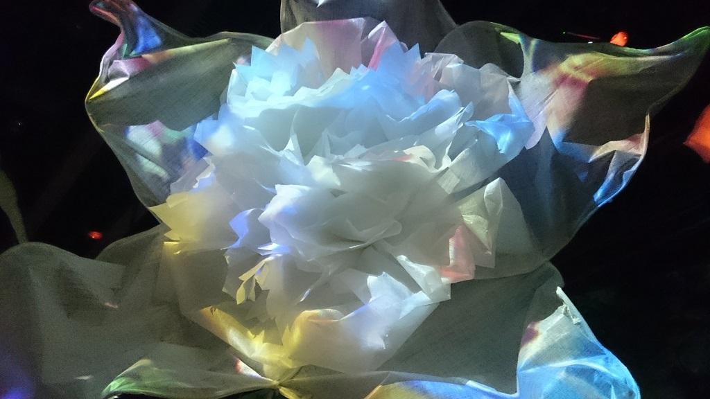 flowersbynaked_花