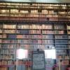 東洋文庫ミュージアムに美しすぎる本棚があると聞いて行ってました!