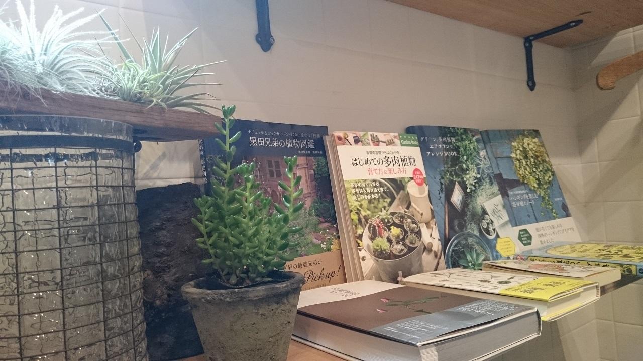 上野_ROUTE BOOKS_本と植物_1