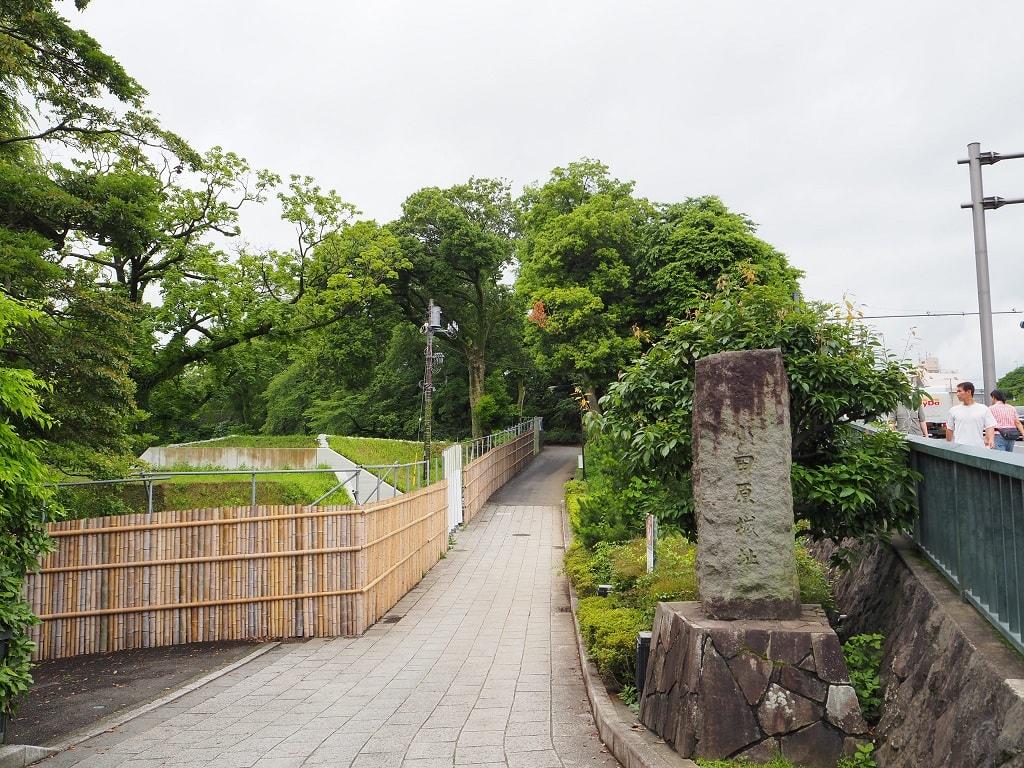 小田原城址公園_1