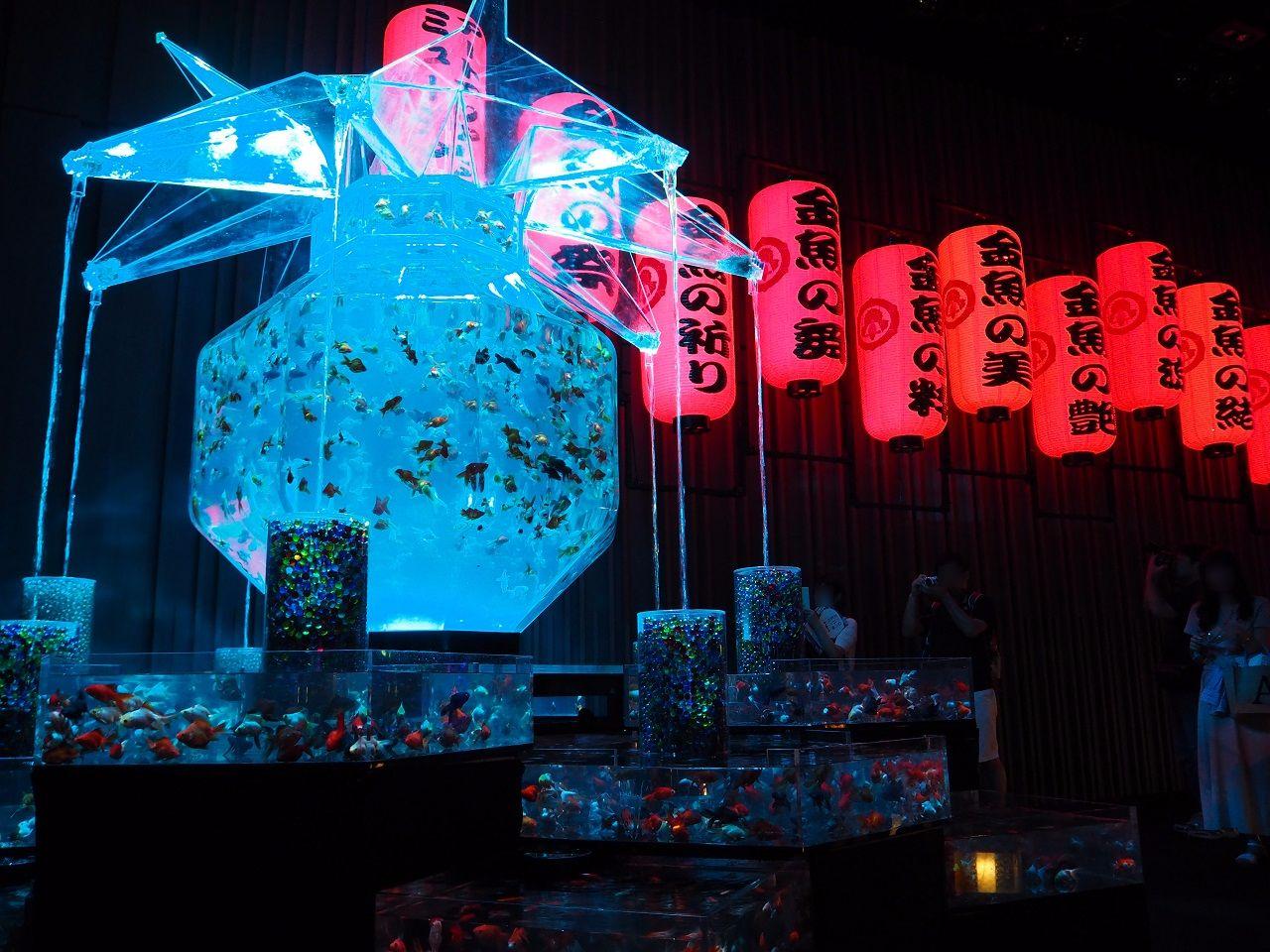 日本橋・アートアクアリウム2016_超・花魁3