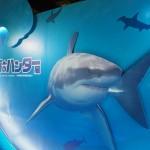 【感想】海のハンター展:最強のハンターとは一体何?