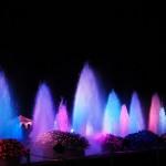 上野恩賜公園のライトアップされた噴水が綺麗!